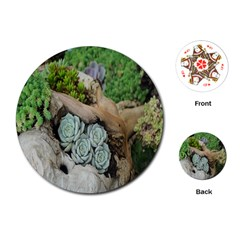 Plant Succulent Plants Flower Wood Playing Cards (round)  by Nexatart