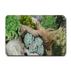 Plant Succulent Plants Flower Wood Small Doormat  by Nexatart