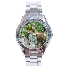 Plant Succulent Plants Flower Wood Stainless Steel Analogue Watch by Nexatart
