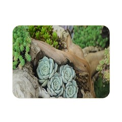 Plant Succulent Plants Flower Wood Double Sided Flano Blanket (mini)  by Nexatart