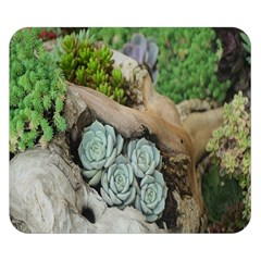 Plant Succulent Plants Flower Wood Double Sided Flano Blanket (small)  by Nexatart