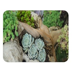 Plant Succulent Plants Flower Wood Double Sided Flano Blanket (large)  by Nexatart