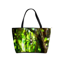 Spider Spiders Web Spider Web Shoulder Handbags by Nexatart