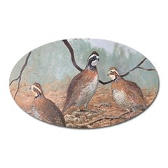 Bob White Quail Oval Magnet by theunrulyartist