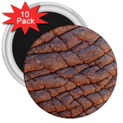 Elephant Skin 3  Magnets (10 Pack)  by Amaryn4rt