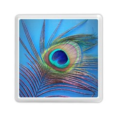 Peacock Feather Blue Green Bright Memory Card Reader (square)