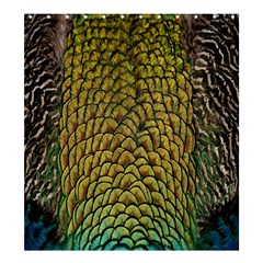 Peacock Bird Feather Gold Blue Brown Shower Curtain 66  X 72  (large)  by Alisyart