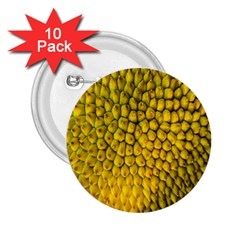 Jack Shell Jack Fruit Close 2 25  Buttons (10 Pack)  by Amaryn4rt