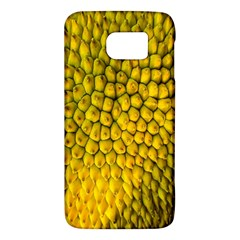 Jack Shell Jack Fruit Close Galaxy S6