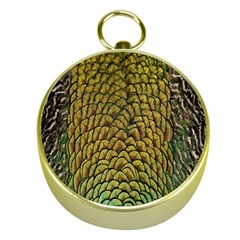Colorful Iridescent Feather Bird Color Peacock Gold Compasses by Amaryn4rt