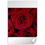 Roses Flowers Red Forest Bloom Canvas 24  x 36