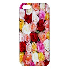 Rose Color Beautiful Flowers Iphone 5s/ Se Premium Hardshell Case by Amaryn4rt