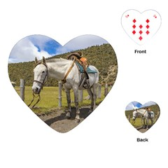 White Horse Tied Up At Cotopaxi National Park Ecuador Playing Cards (heart)  by dflcprints
