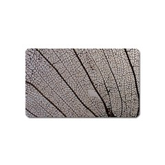 Sea Fan Coral Intricate Patterns Magnet (name Card)