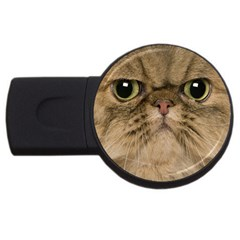 Cute Persian Cat Face In Closeup Usb Flash Drive Round (2 Gb) by Amaryn4rt