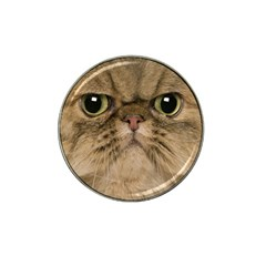 Cute Persian Cat Face In Closeup Hat Clip Ball Marker (4 Pack) by Amaryn4rt