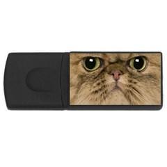 Cute Persian Cat Face In Closeup Usb Flash Drive Rectangular (4 Gb) by Amaryn4rt