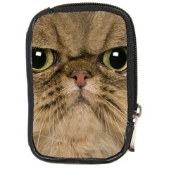 Cute Persian Cat Face In Closeup Compact Camera Cases by Amaryn4rt