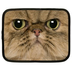 Cute Persian Cat Face In Closeup Netbook Case (xxl)  by Amaryn4rt