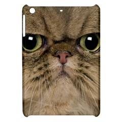 Cute Persian Cat Face In Closeup Apple Ipad Mini Hardshell Case by Amaryn4rt