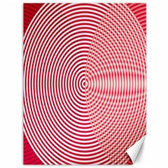 Circle Line Red Pink White Wave Canvas 36  X 48   by Alisyart