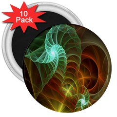 Art Shell Spirals Texture 3  Magnets (10 Pack)  by Simbadda