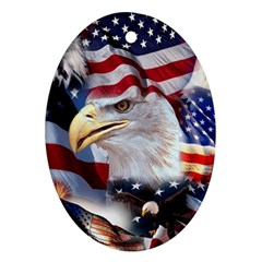 United States Of America Images Independence Day Oval Ornament (two Sides) by Onesevenart