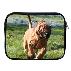 Bloodhound Running Apple iPad 2/3/4 Zipper Cases