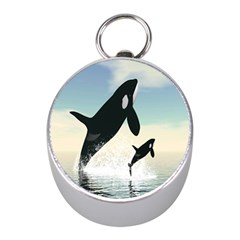 Whale Mum Baby Jump Mini Silver Compasses by Alisyart