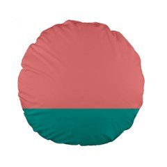 Flag Color Pink Blue Line Standard 15  Premium Flano Round Cushions by Alisyart