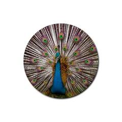 Indian Peacock Plumage Rubber Round Coaster (4 Pack)  by Simbadda