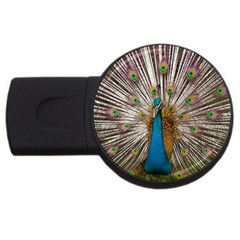 Indian Peacock Plumage USB Flash Drive Round (4 GB) by Simbadda