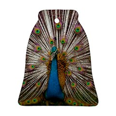 Indian Peacock Plumage Ornament (bell) by Simbadda