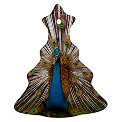 Indian Peacock Plumage Christmas Tree Ornament (two Sides) by Simbadda