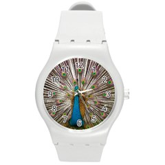 Indian Peacock Plumage Round Plastic Sport Watch (m) by Simbadda