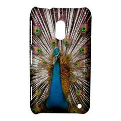 Indian Peacock Plumage Nokia Lumia 620 by Simbadda