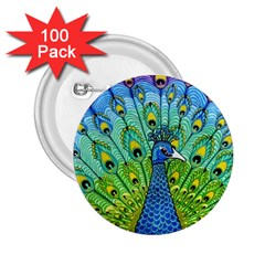 Peacock Bird Animation 2 25  Buttons (100 Pack)  by Simbadda