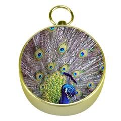 Peacock Bird Feathers Gold Compasses by Simbadda
