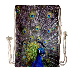 Peacock Bird Feathers Drawstring Bag (large) by Simbadda