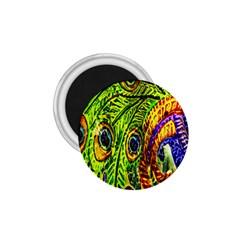 Peacock Feathers 1 75  Magnets by Simbadda