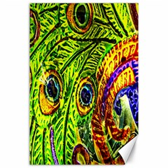 Peacock Feathers Canvas 24  X 36  by Simbadda