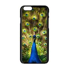 Peacock Bird Apple Iphone 6/6s Black Enamel Case by Simbadda