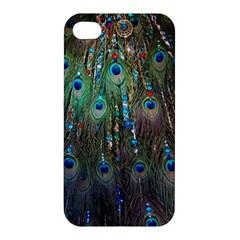 Peacock Jewelery Apple Iphone 4/4s Hardshell Case by Simbadda