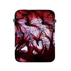 Jellyfish Ballet Wind Apple Ipad 2/3/4 Protective Soft Cases by Simbadda