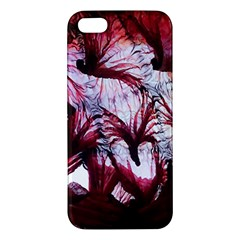 Jellyfish Ballet Wind Iphone 5s/ Se Premium Hardshell Case by Simbadda