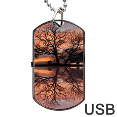 Aurora Sunset Sun Landscape Dog Tag Usb Flash (two Sides) by Simbadda