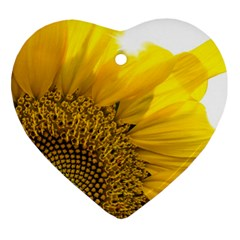 Plant Nature Leaf Flower Season Heart Ornament (two Sides) by Simbadda