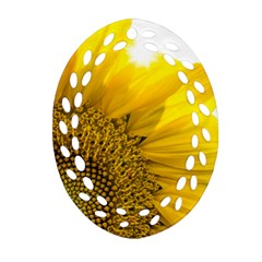 Plant Nature Leaf Flower Season Ornament (oval Filigree) by Simbadda