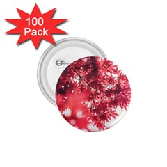 Maple Leaves Red Autumn Fall 1 75  Buttons (100 Pack)  by Onesevenart