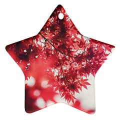 Maple Leaves Red Autumn Fall Star Ornament (two Sides) by Onesevenart